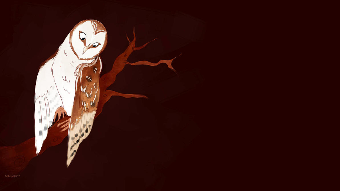 Owl by nealee-q