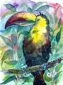 Watercolor TOUCAN painting (illustration) + video
