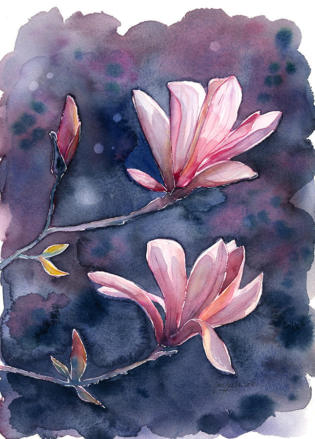 Magnolia, watercolor painting