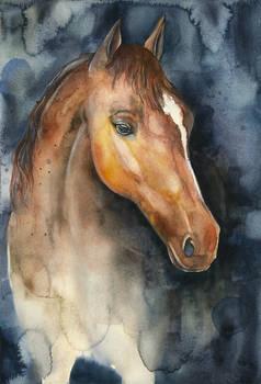 Watercolor Horse + TUTORIAL