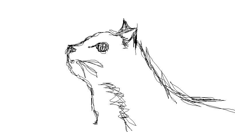 Drawing Scribble Method : Scribble method cat by dreammeadowss on deviantart