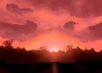 Sunset Florest