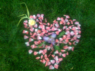 Lawn art by gymnastar1326kairi