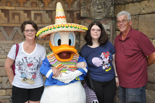 Donald in Disney World