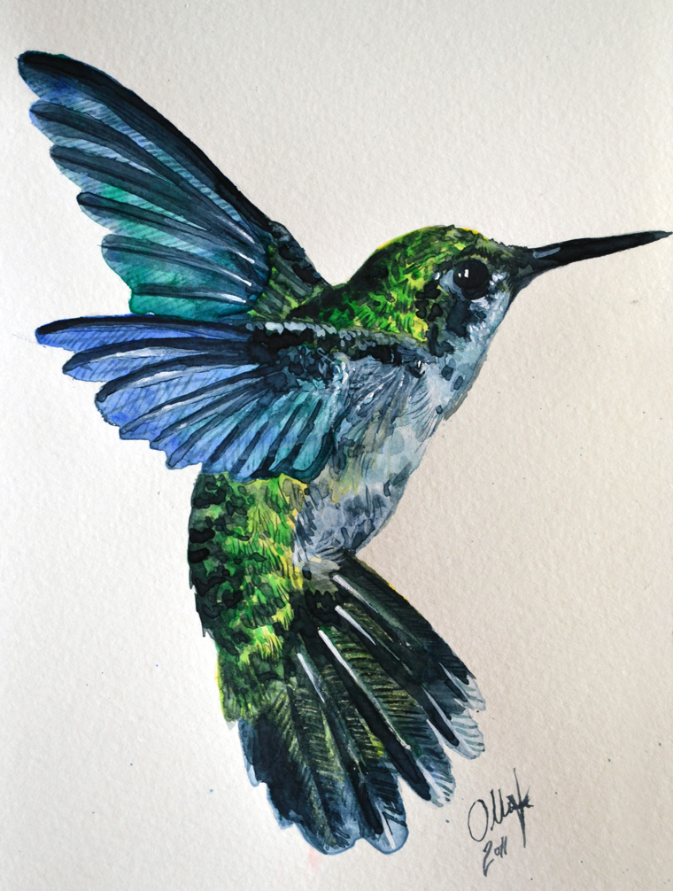 Hummingbird Drawings Step By Step: Humming Bird Watercolor By Tyleen On DeviantArt