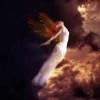 Le saut de l'ange by CherryAbittant