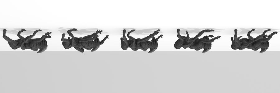 Cadonex Crawl Cycle