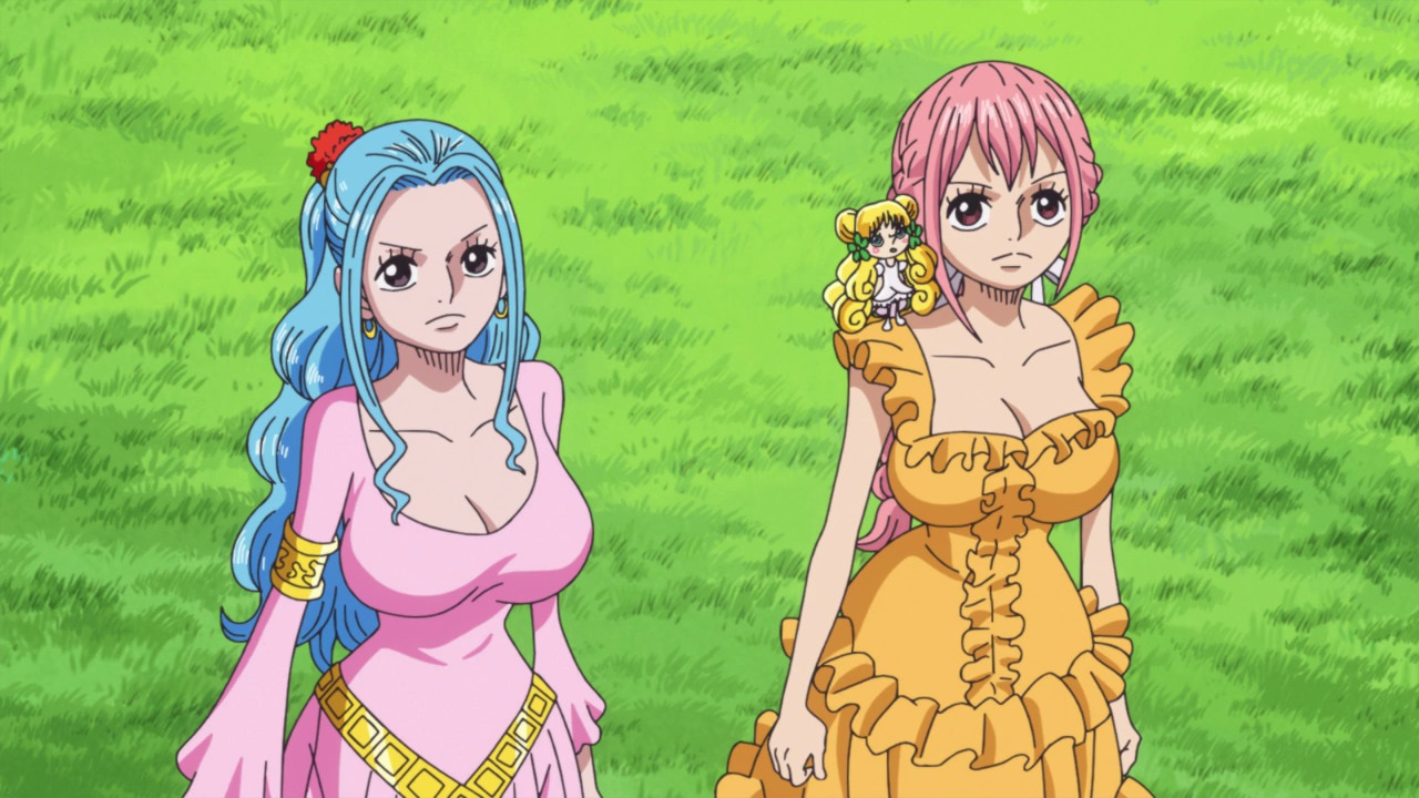 Vivi and Rebecca - One Piece ep 889 by Berg-anime on ...