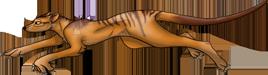 Thylacine header by Incyray