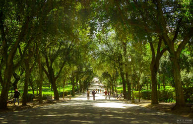 Storybook Lane by MattRiggPhotography