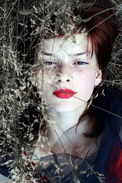spark by Katarinka