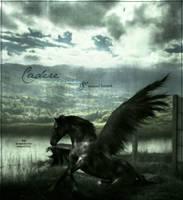 Cadere.falling. by aminata
