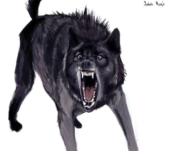 angry animal drawing - photo #30