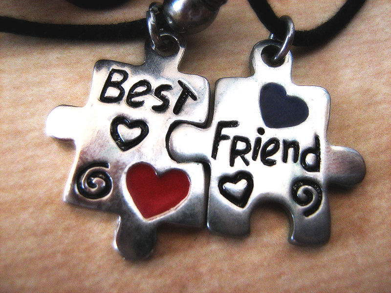 Best friend Puzzle by Lara-Princess