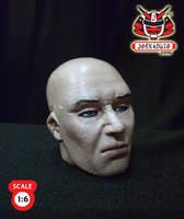 1.6 Head Sculpture Hitman 47 2 by wongjoe82
