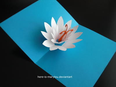 lotus popup card by here is marylou on deviantart