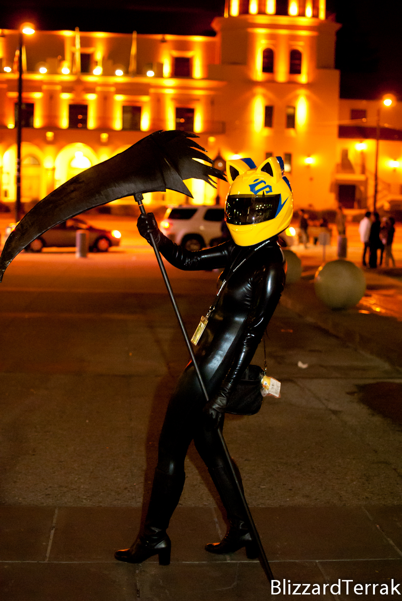 F11 - Celty Sturluson by BlizzardTerrak
