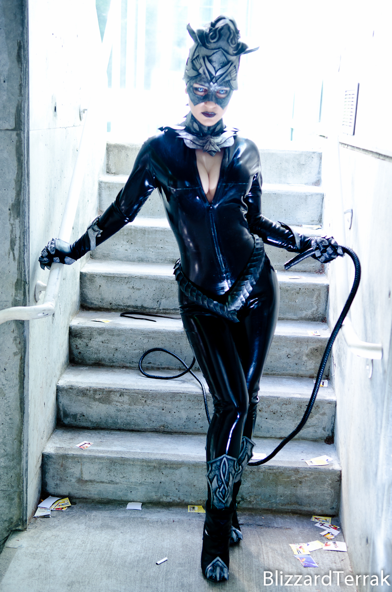 F13 - Catwoman by BlizzardTerrak