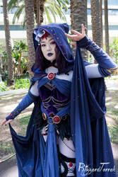 W18 - Raven by BlizzardTerrak