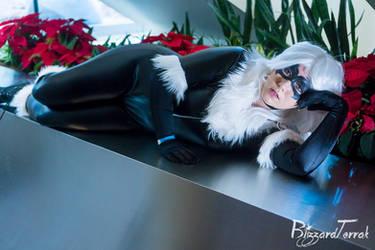 HVF18 - Black Cat by BlizzardTerrak