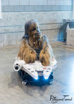 SWCC19 - Chewie and Falcon by BlizzardTerrak
