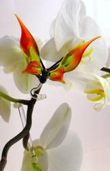 Ochid Rod Butterfly by Glasmagie