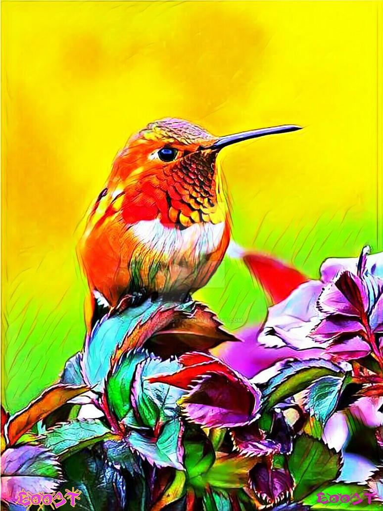 oiseau coloris  by Chrisboost94