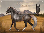 Valkyrie (Foal)