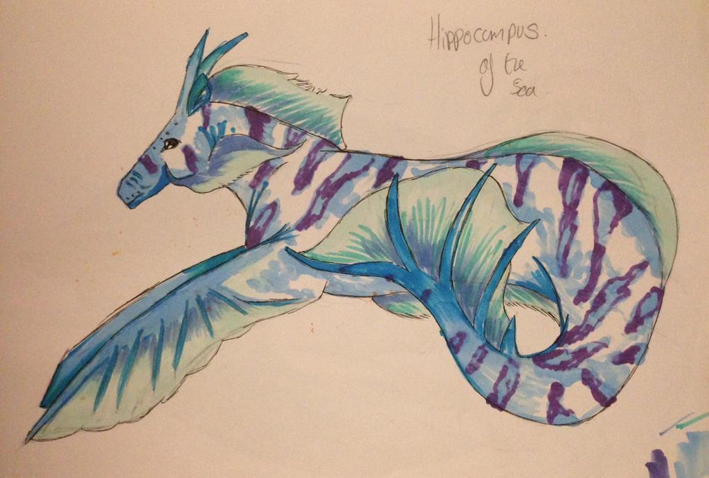 Hippocampus by TheIdiotAndTheThief