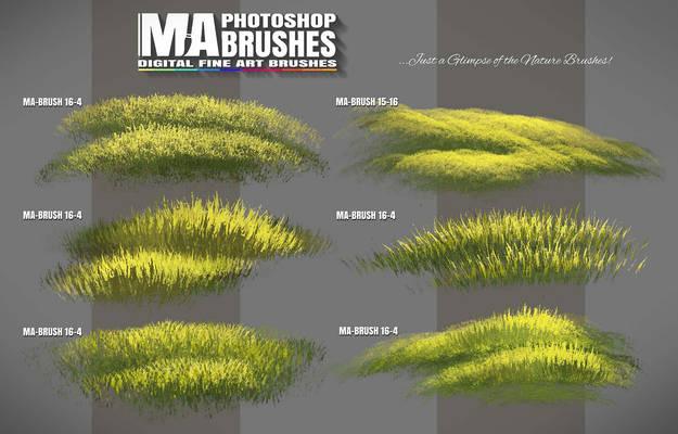 Photoshop Foliage / Grass / Tree / Leave Brushes