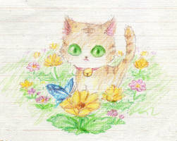 cat by acory