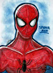 Your Friendly Neighbourhood Spiderman