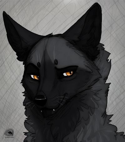 Fox guy by NatalieDeCorsair