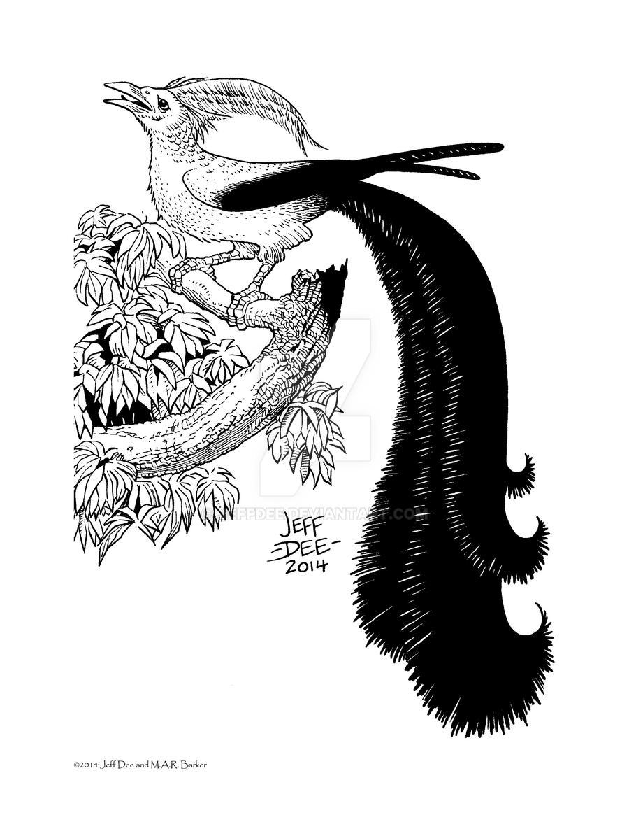 Kheshchal (the Plumed Bird) by JeffDee