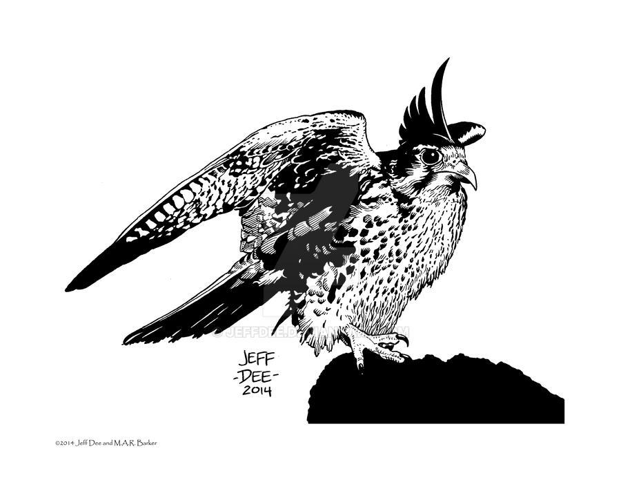 Kuni (the Falcon) by JeffDee