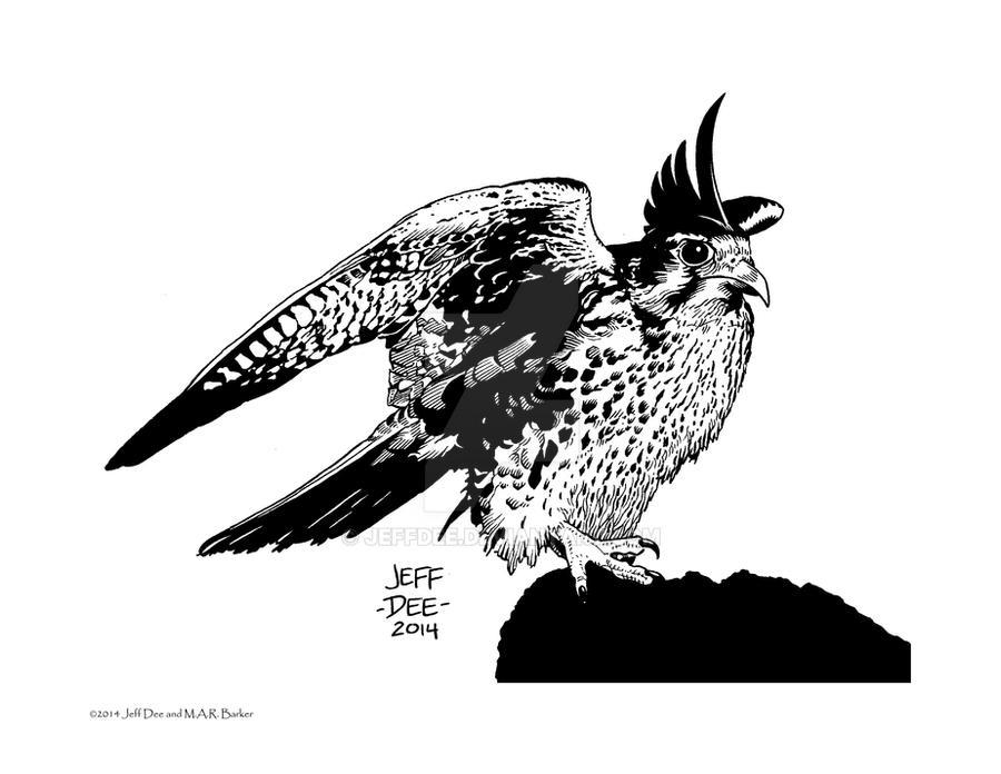 Kuni (the Falcon)