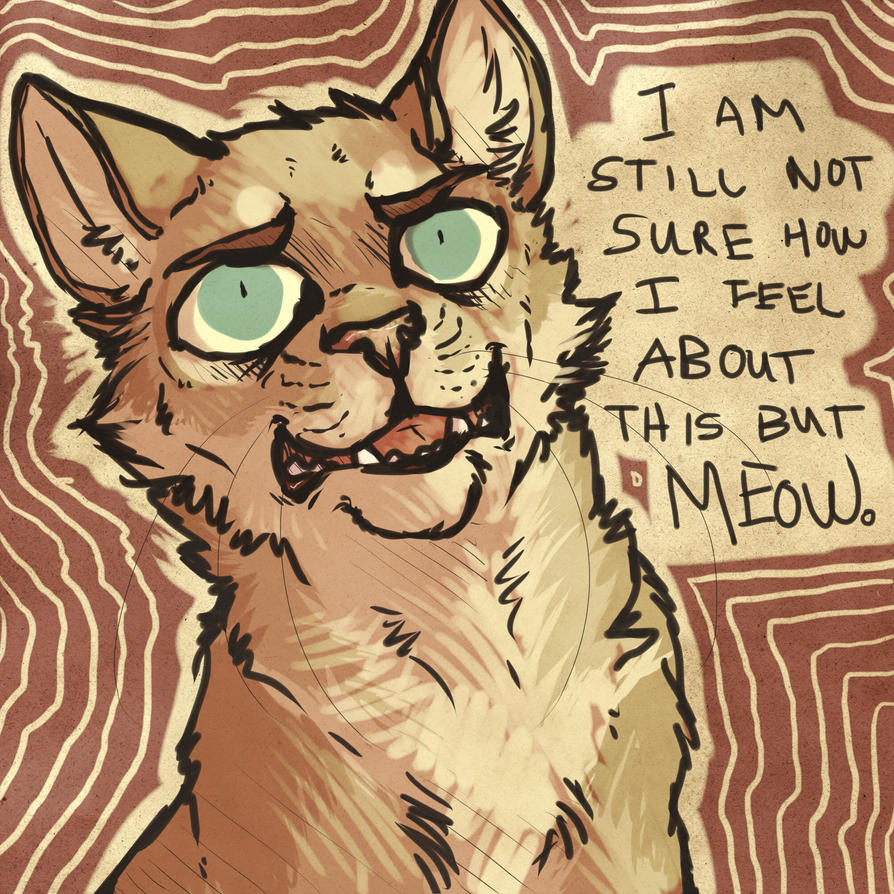 I STILL DON'T QUITE UNDERSTAND THIS CAT THIN-MEOW by HereLiesDeadSquirrel