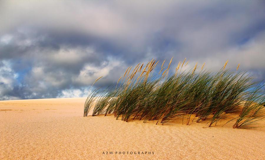 Sky of Dreams by A2Matos
