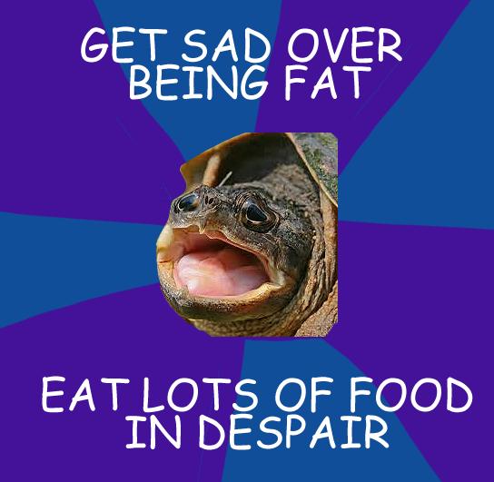 Flying turtle meme - photo#11