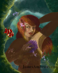 Mermaid Nem Sm001
