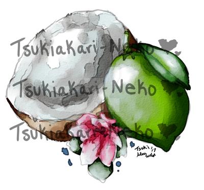 Lime and coconut by Tsukiakari-Neko