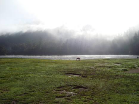Zempoala Lake 2