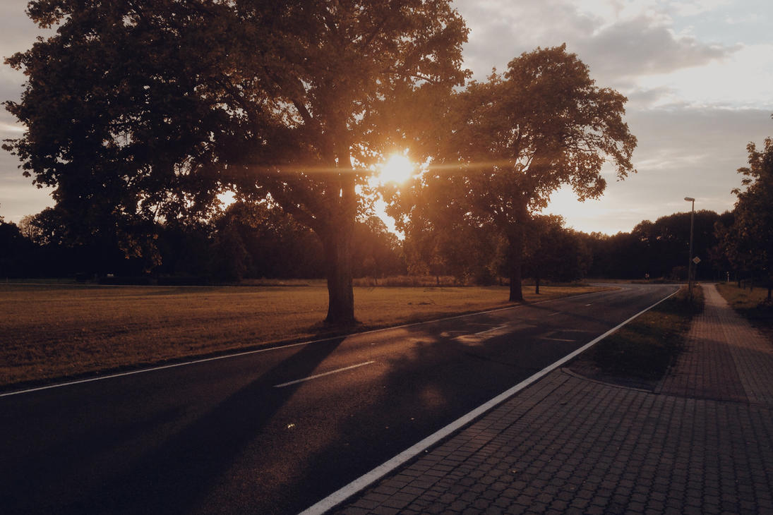 Sunshine by BotzFrotz