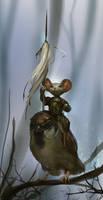 The Sparrow Rider