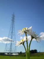 power daisy by alltheway96