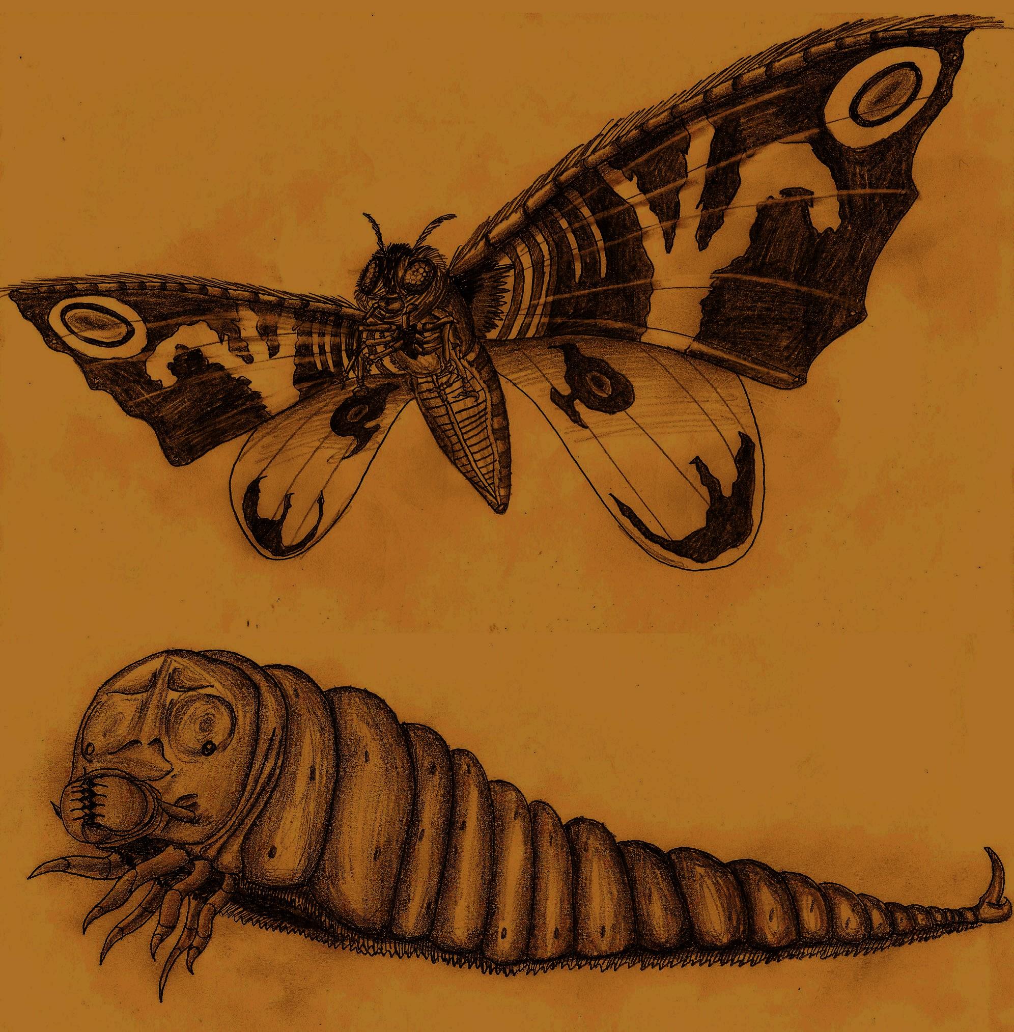 Mothra by Adiraiju
