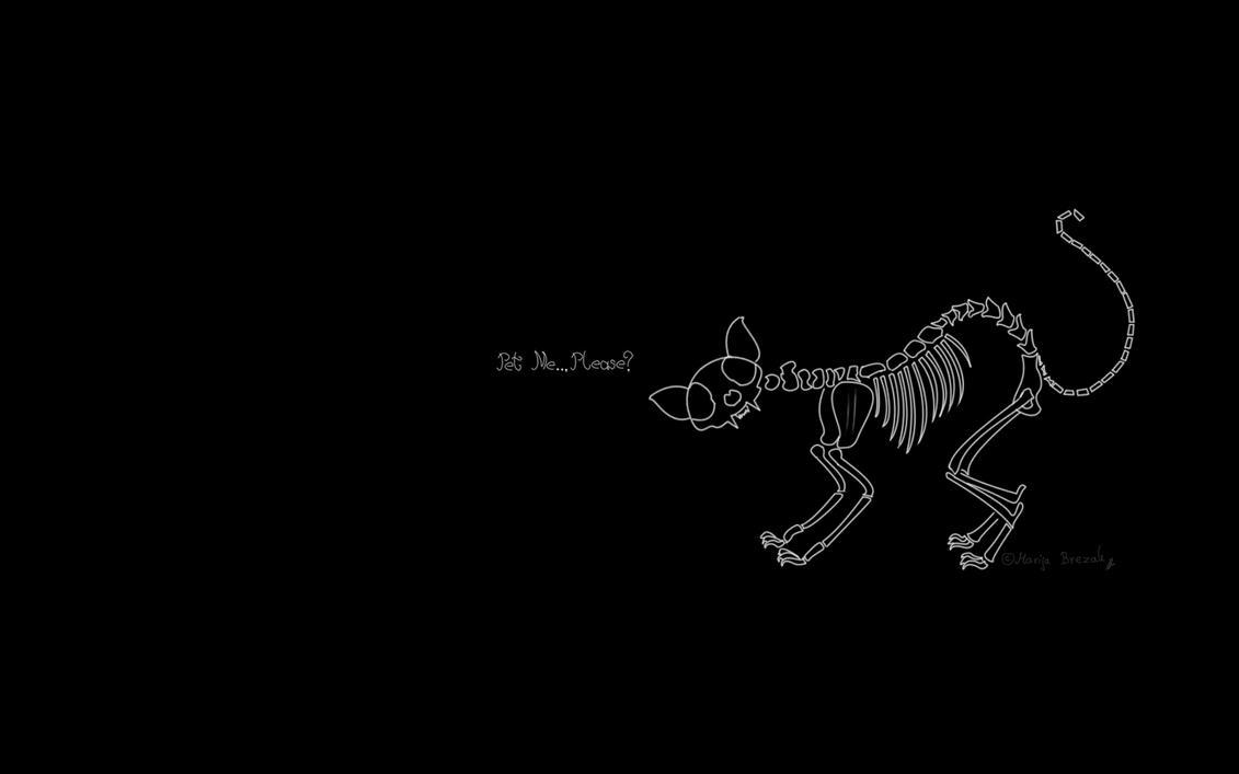 Cat skeleton (Pet Me... Please?) by Mary-Aurora on DeviantArt