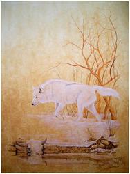 White Wolf by T-BRASS