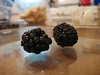 Blackberries Stock by moonfreak-stock