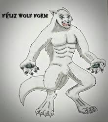 Felix Wolf Form